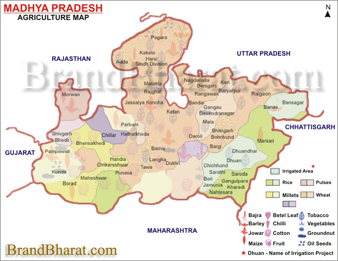 Agriculture Map Madhya Pradesh